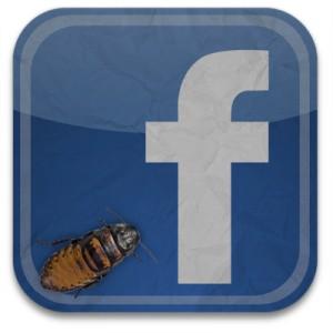 Un bug en Facebook permite el robo de imágenes de la cuenta de su CEO Mark Zuckerberg