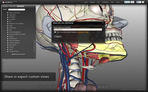 BioDigital Human: el cuerpo humano en tres dimensiones