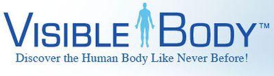 Atlas anatómico en Visible Body